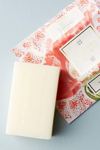 Anatomy Of A Fragrance Bar Soap
