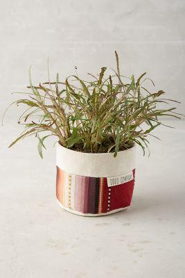 Sedona Planter