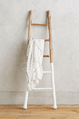 White-Dipped Ladder