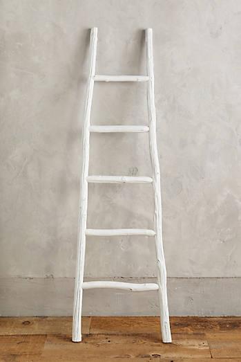 Minimalist Ladder
