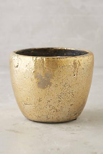 Aureate Pot