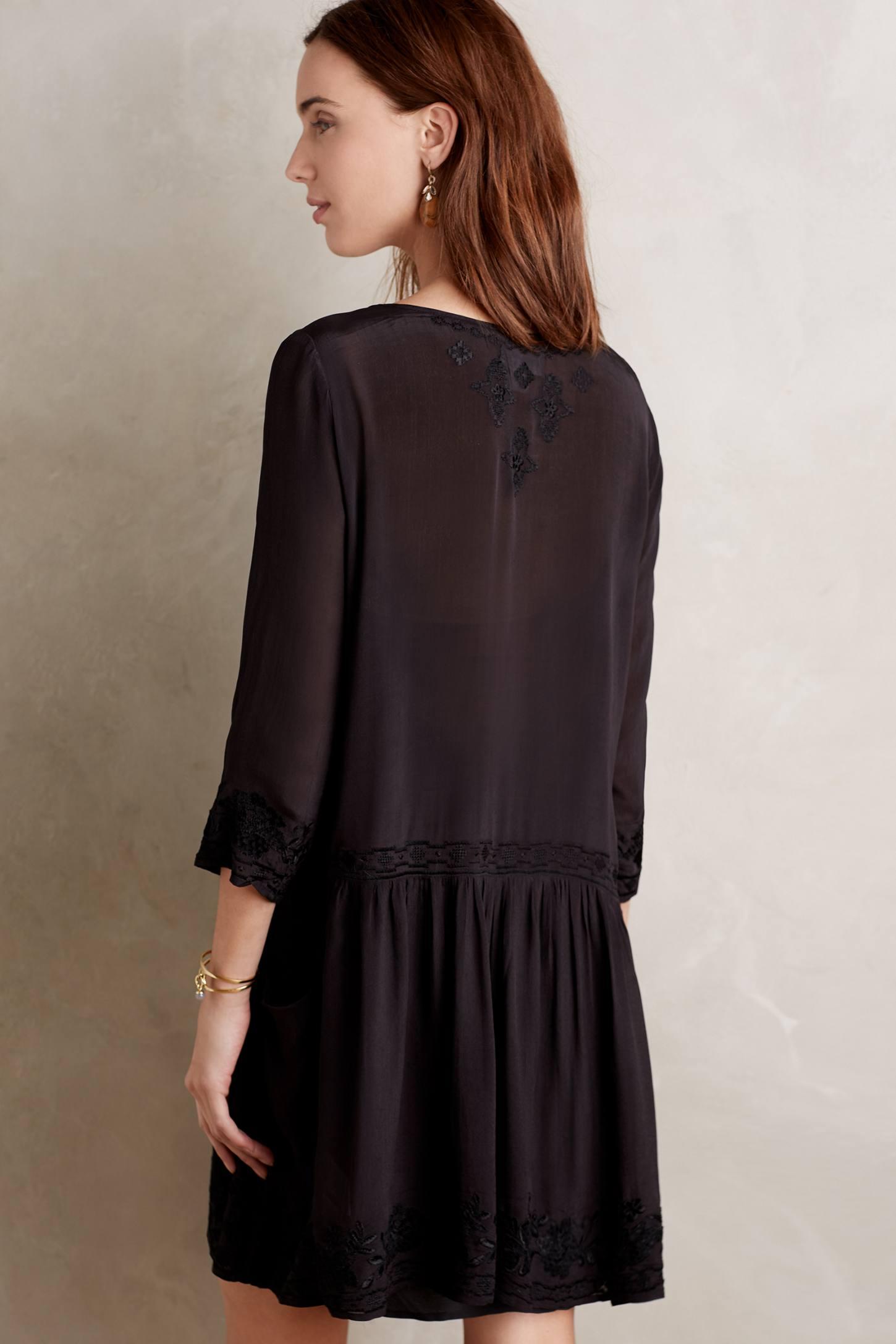 Embroidered Drop-Waist Dress