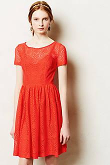 Stella Petite Dress