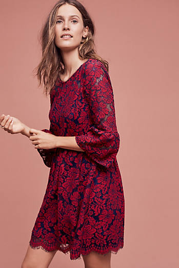 Tava Lace Swing Dress