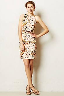 Roseblush Pencil Dress