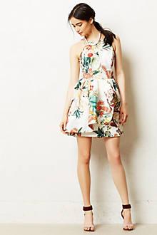 Botanic Atelier Peplum Dress
