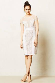 Palido Mesh Dress