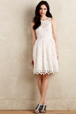 Pina Lace Dress