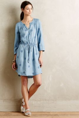 Plumage Chambray Dress
