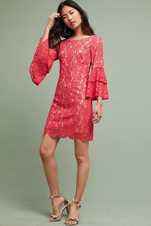 Andressa Lace Dress