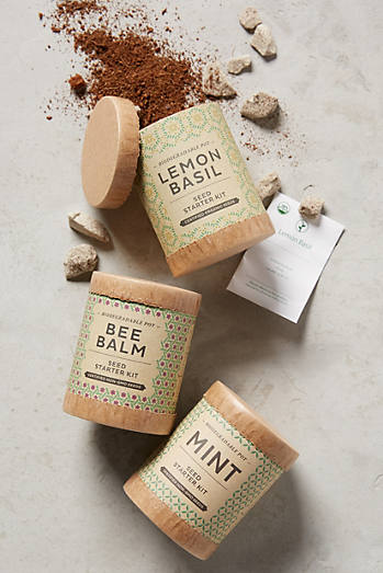 Herbal Tea Seed Starter Set