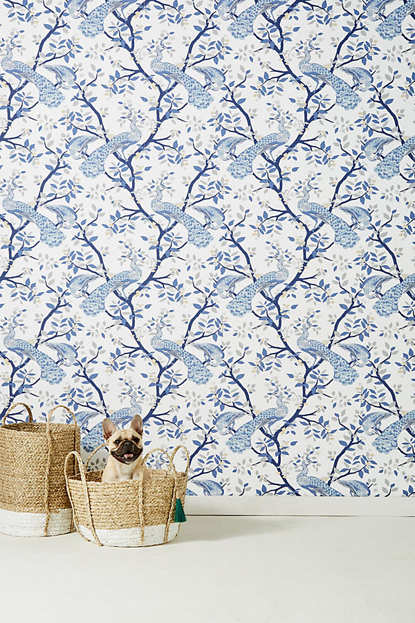 Slide View: 1: Pastel Plumage Wallpaper