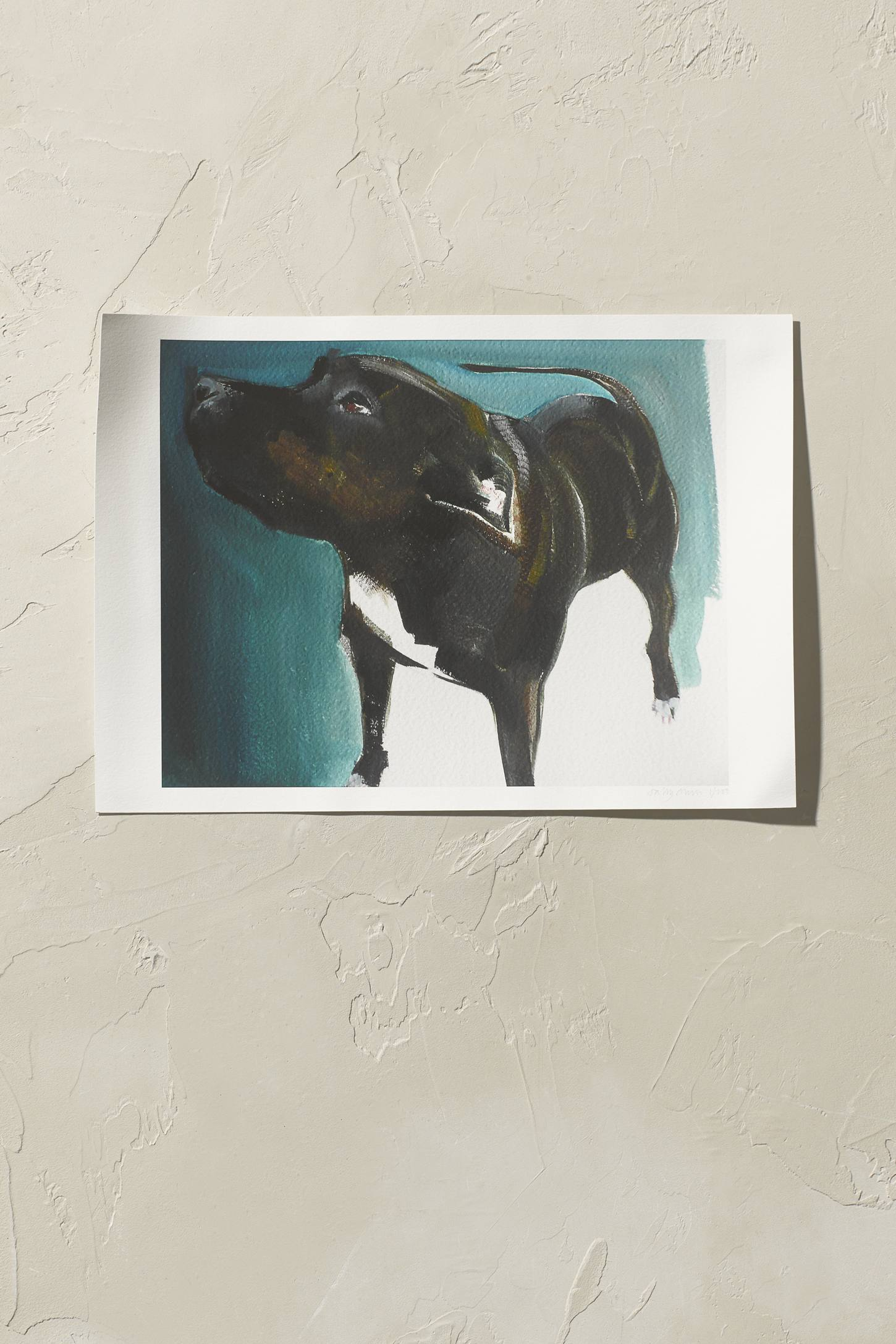 Sally Muir Staffie Wall Art