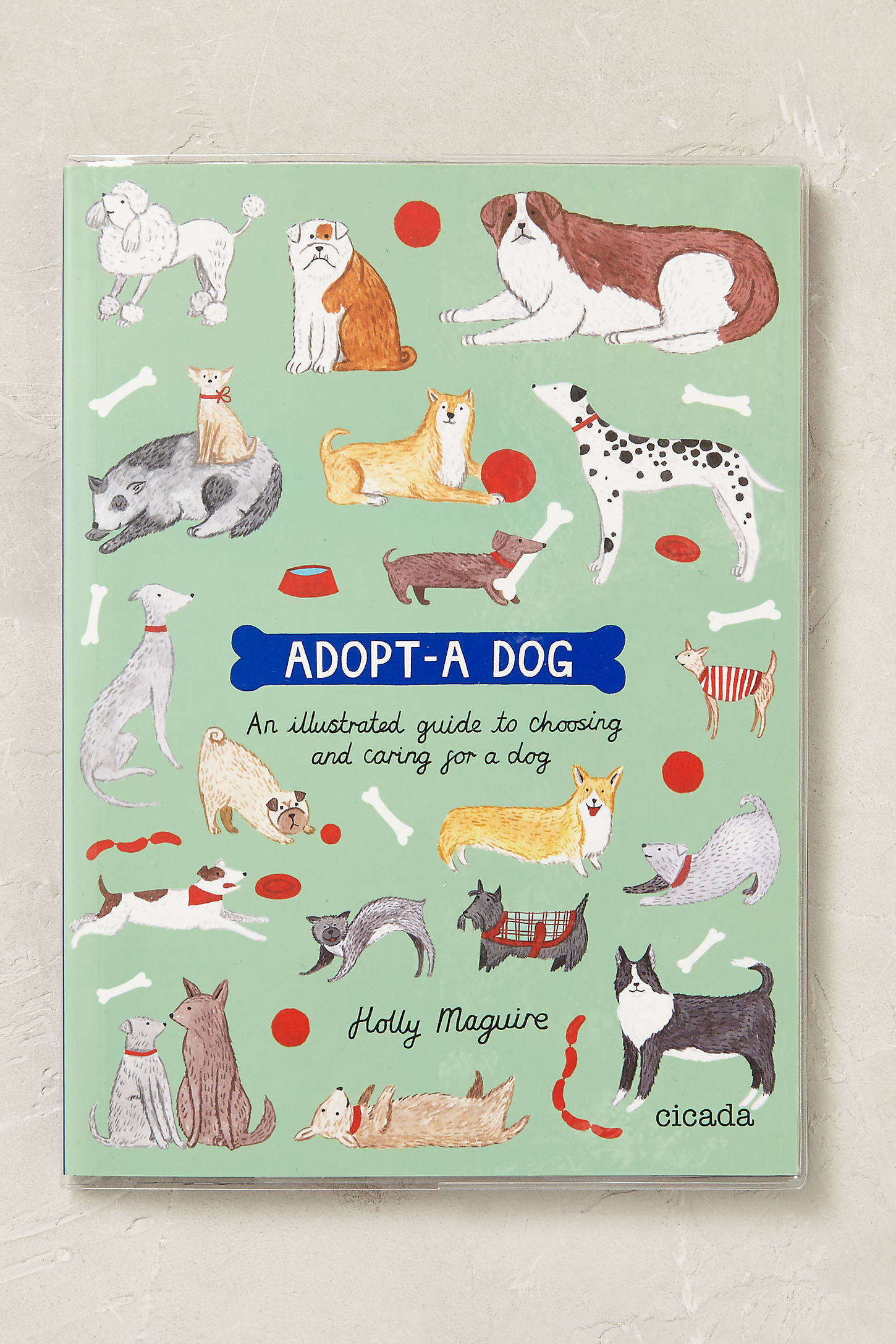 Adopt-A-Dog Activity Book