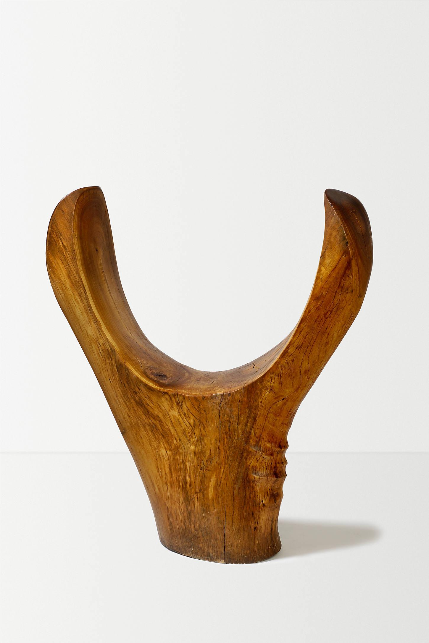 Encircling Chair