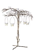 Incandescent Acacia Candleholder