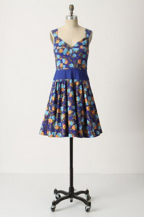 Centifolia Corset Dress - Anthropologie.com