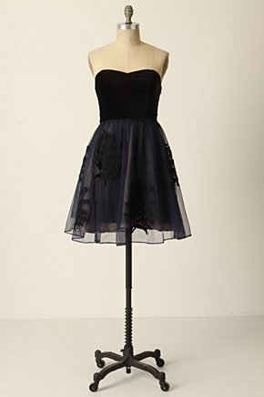 Belle-Of-The-Ball Dress - Anthropologie.com :  mesh tulle velvet little black dress