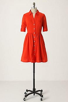 Reed Shirtdress