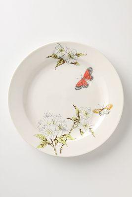 Butterfly Study Dinner plate - 10.75