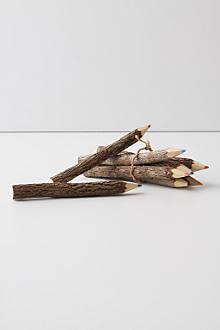 Branch & Twig Colored Pencils