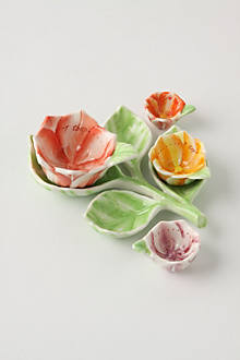 Plucked Petals Measuring Spoons