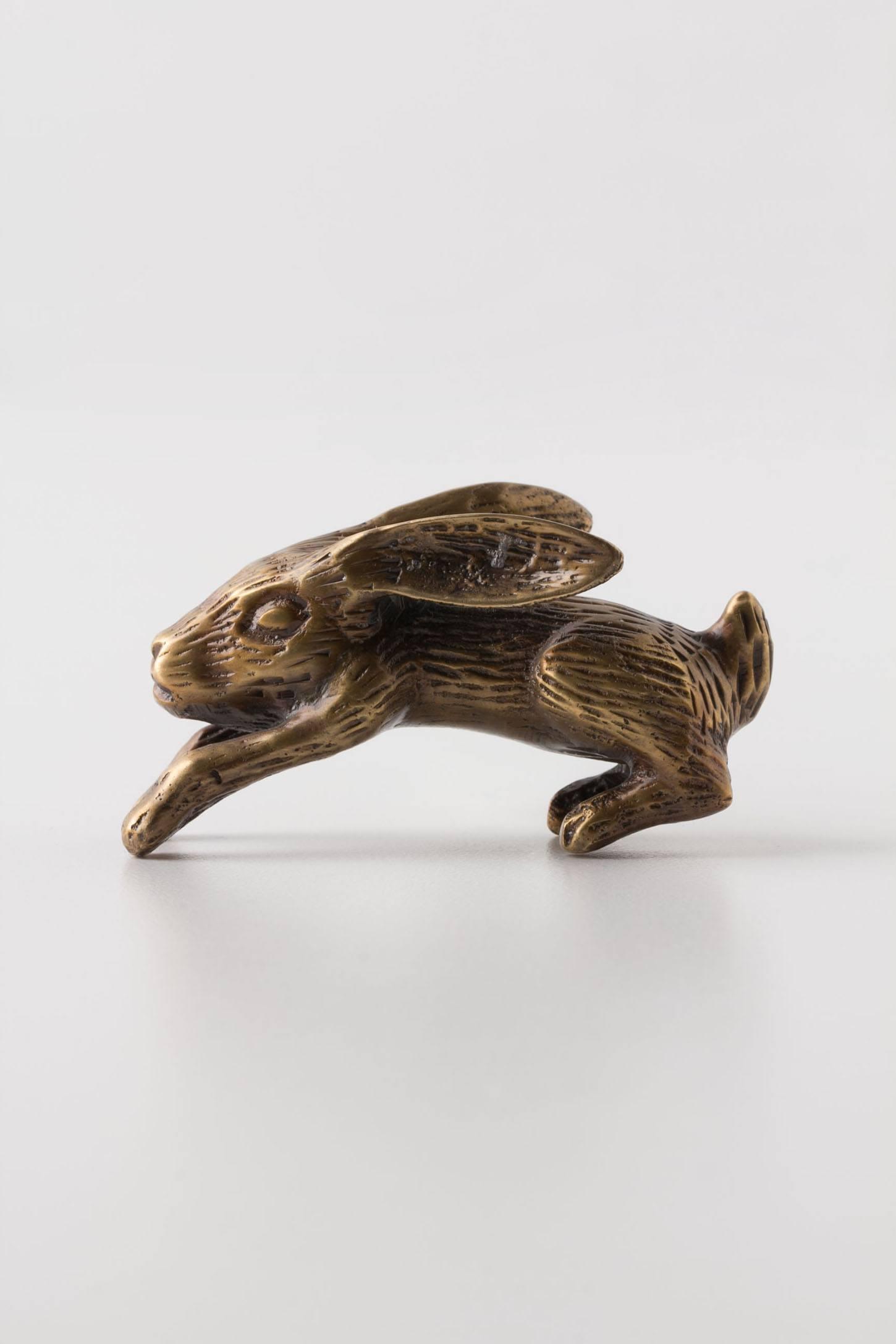 Skedaddle Knob, Rabbit