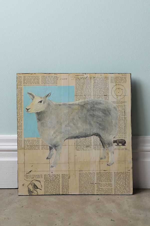 Slide View: 1: Sheep By Tom Judd