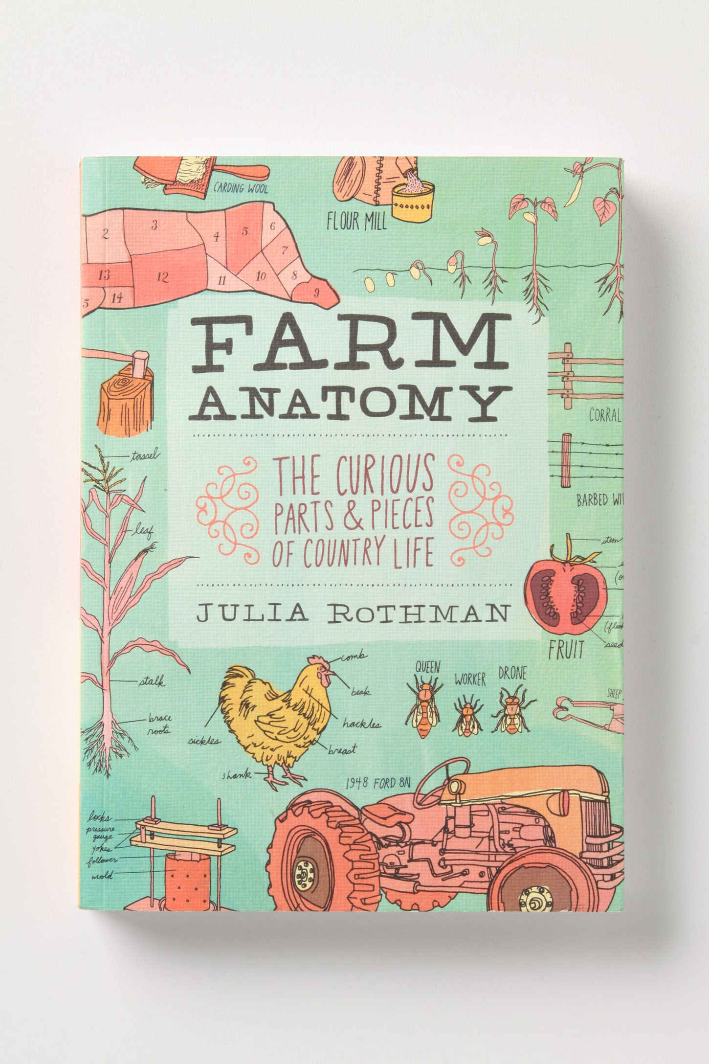 Farm Anatomy The Curious Parts Pieces Of Country Life Anthropologie
