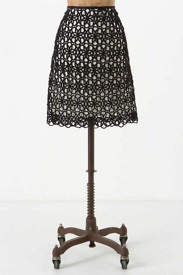 Dilated Lace Skirt