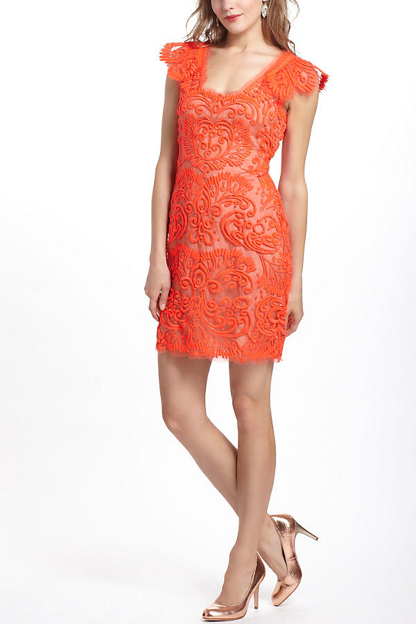 Slide View: 1: Sunblaze Lace Dress