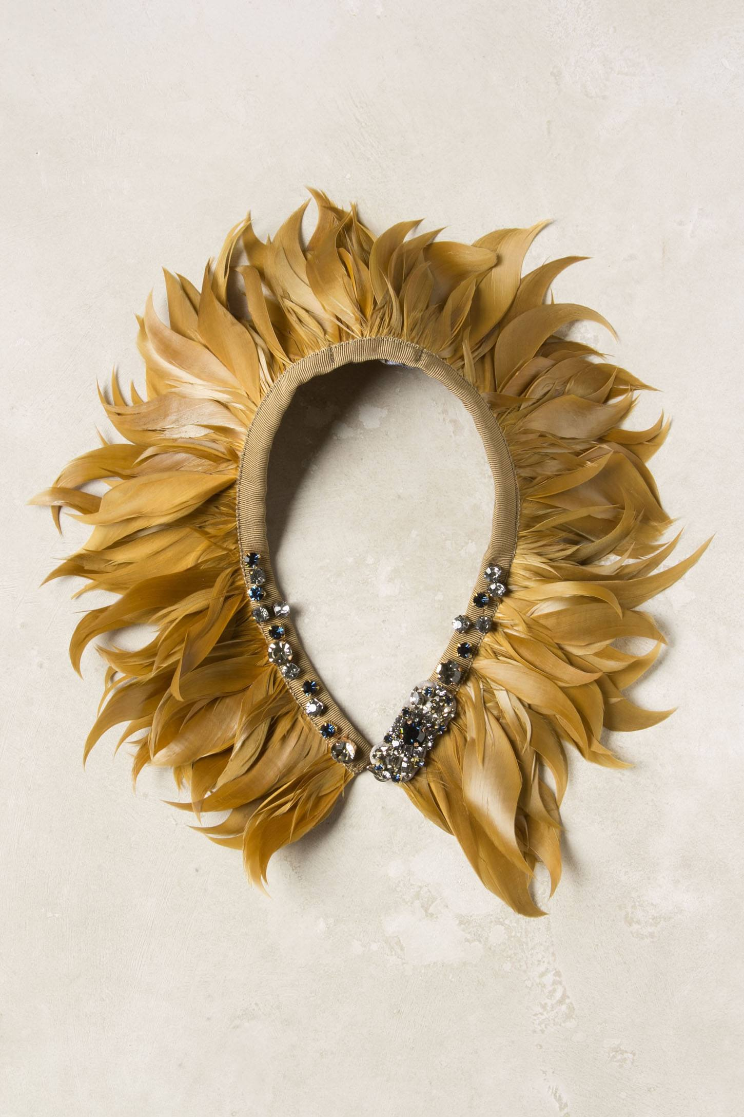 Lionfeather Collar