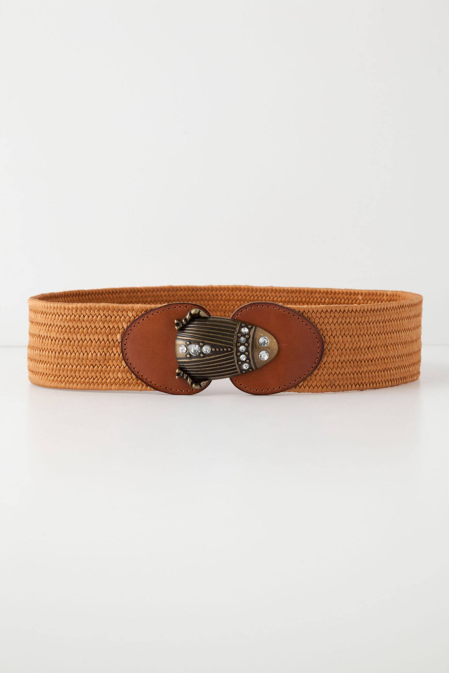 Diving Beetle Belt