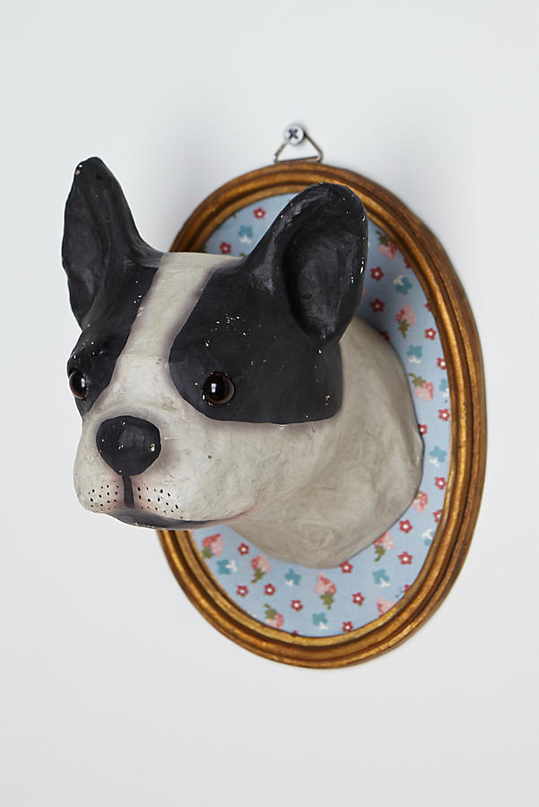 Canine Wall Bust