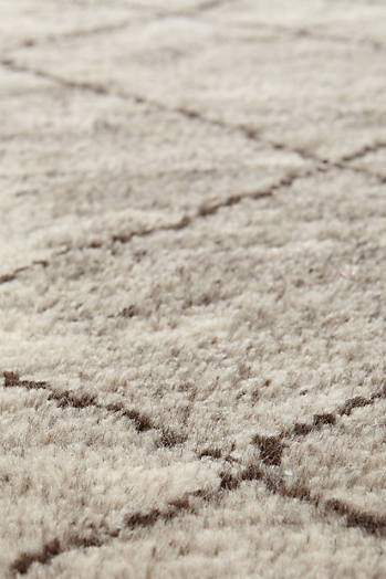 Slide View: 2: Hand-Knotted Adras Rug