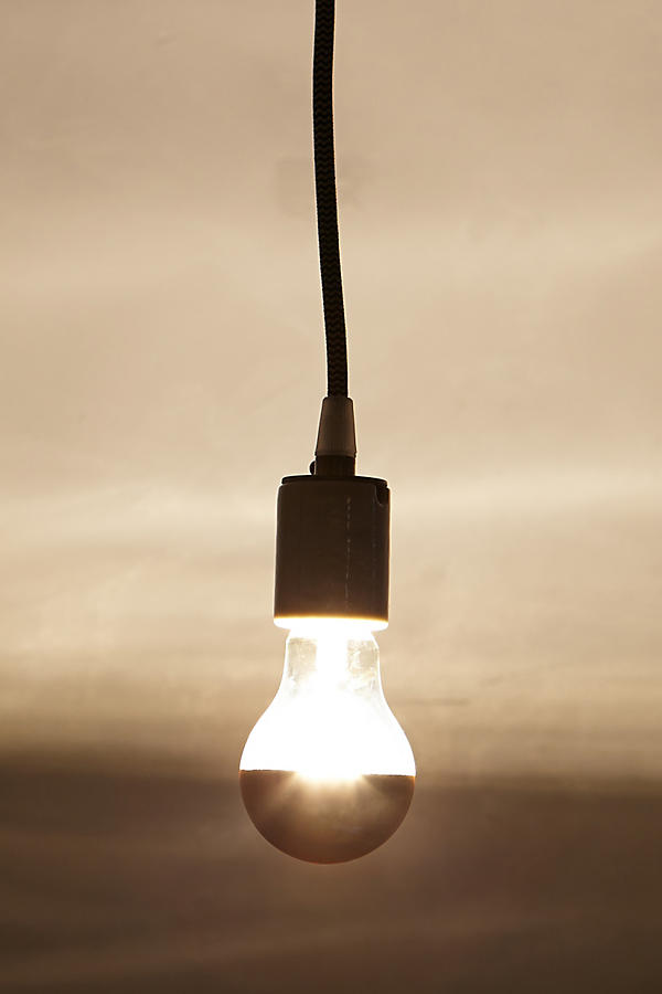 Slide View: 3: Half Gold Light Bulb