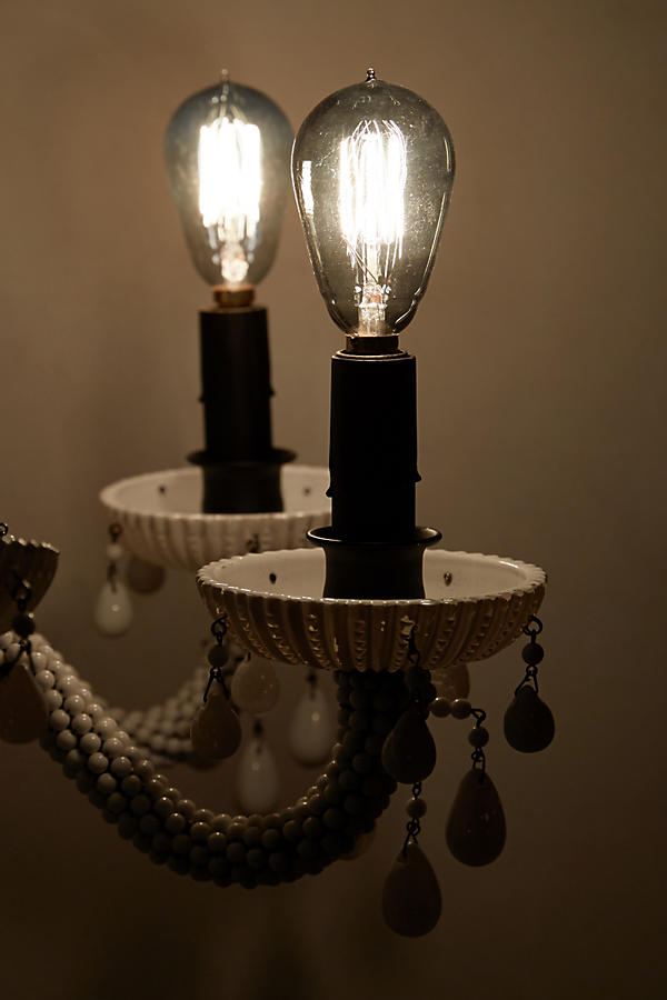 Slide View: 2: Edison Chandelier Bulb