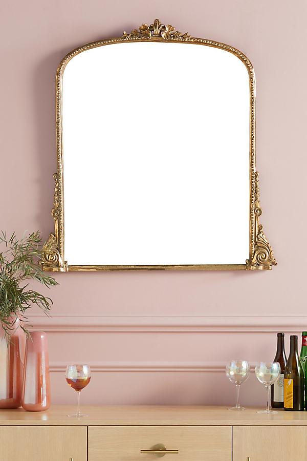 Gleaming Primrose Mirror - Brown