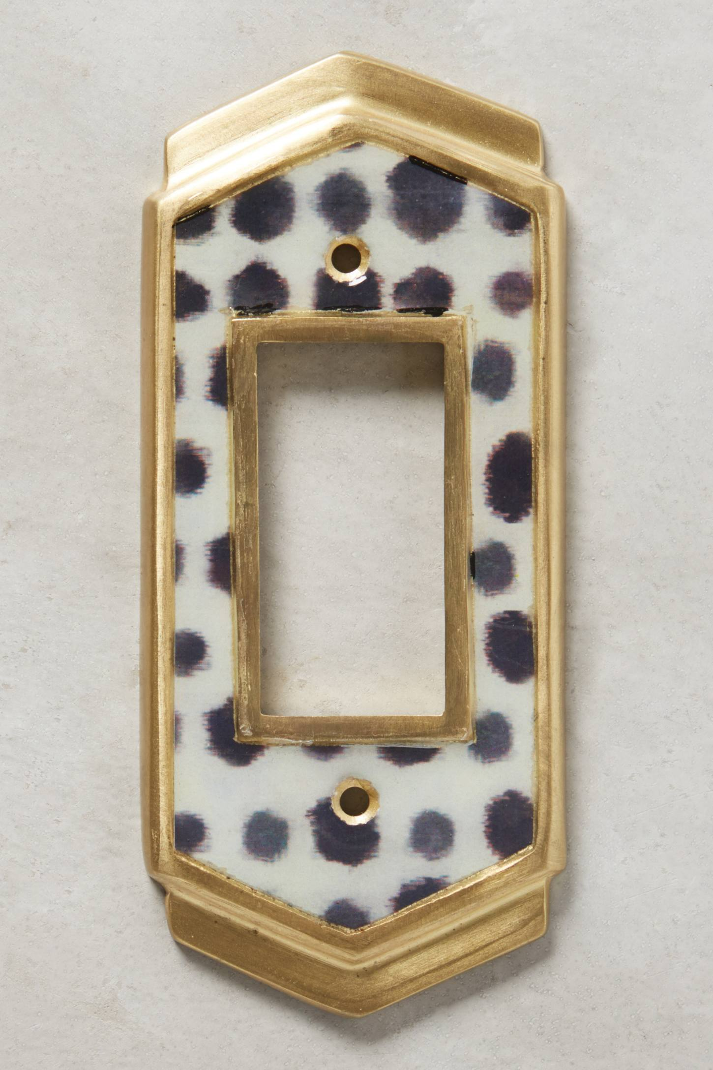 Slide View: 5: Dotted Ames Switch Plate