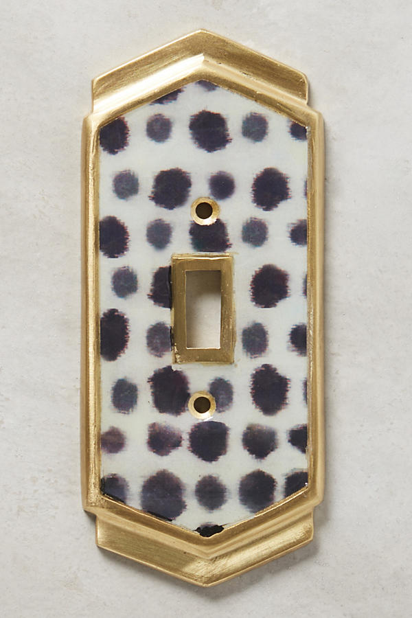 Slide View: 6: Dotted Ames Switch Plate