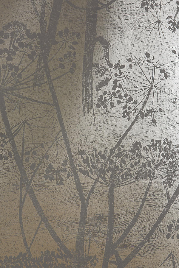 Slide View: 3: Queen Anne's Lace Wallpaper
