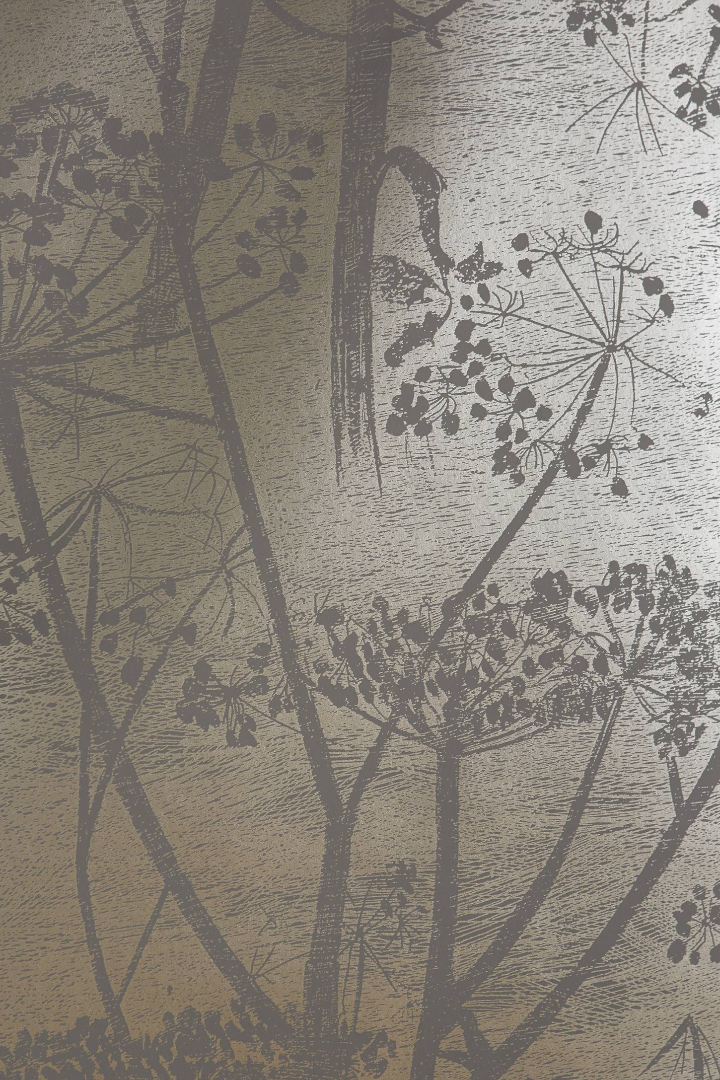 Queen Anne S Lace Wallpaper Anthropologie
