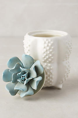 Slide View: 1: Succulent Candle