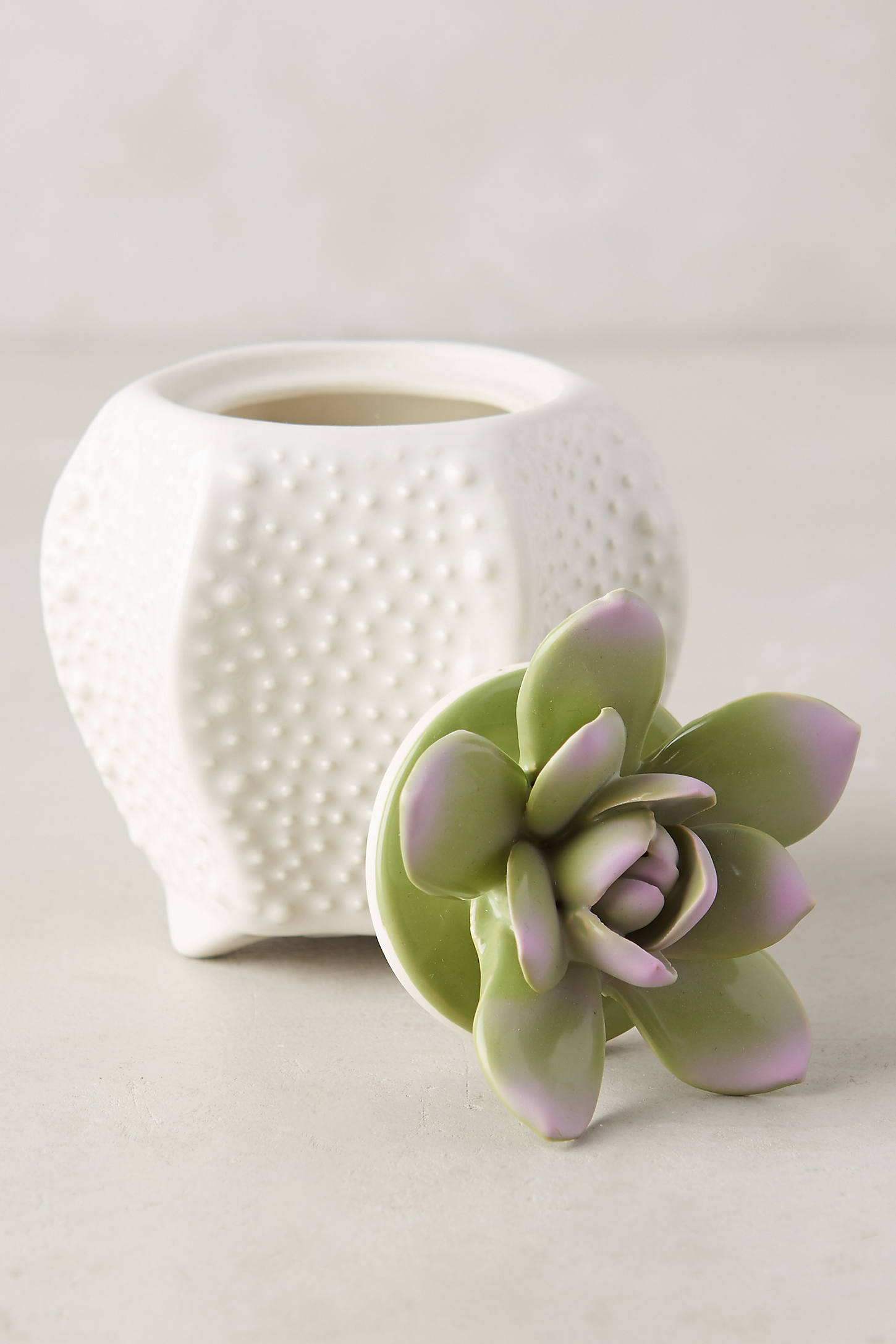 Succulent Candle