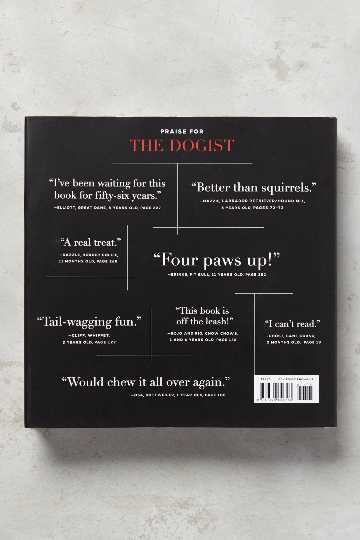 Slide View: 5: The Dogist