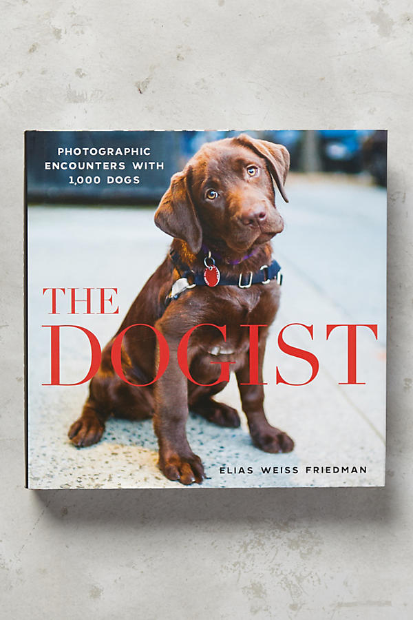 Slide View: 1: The Dogist