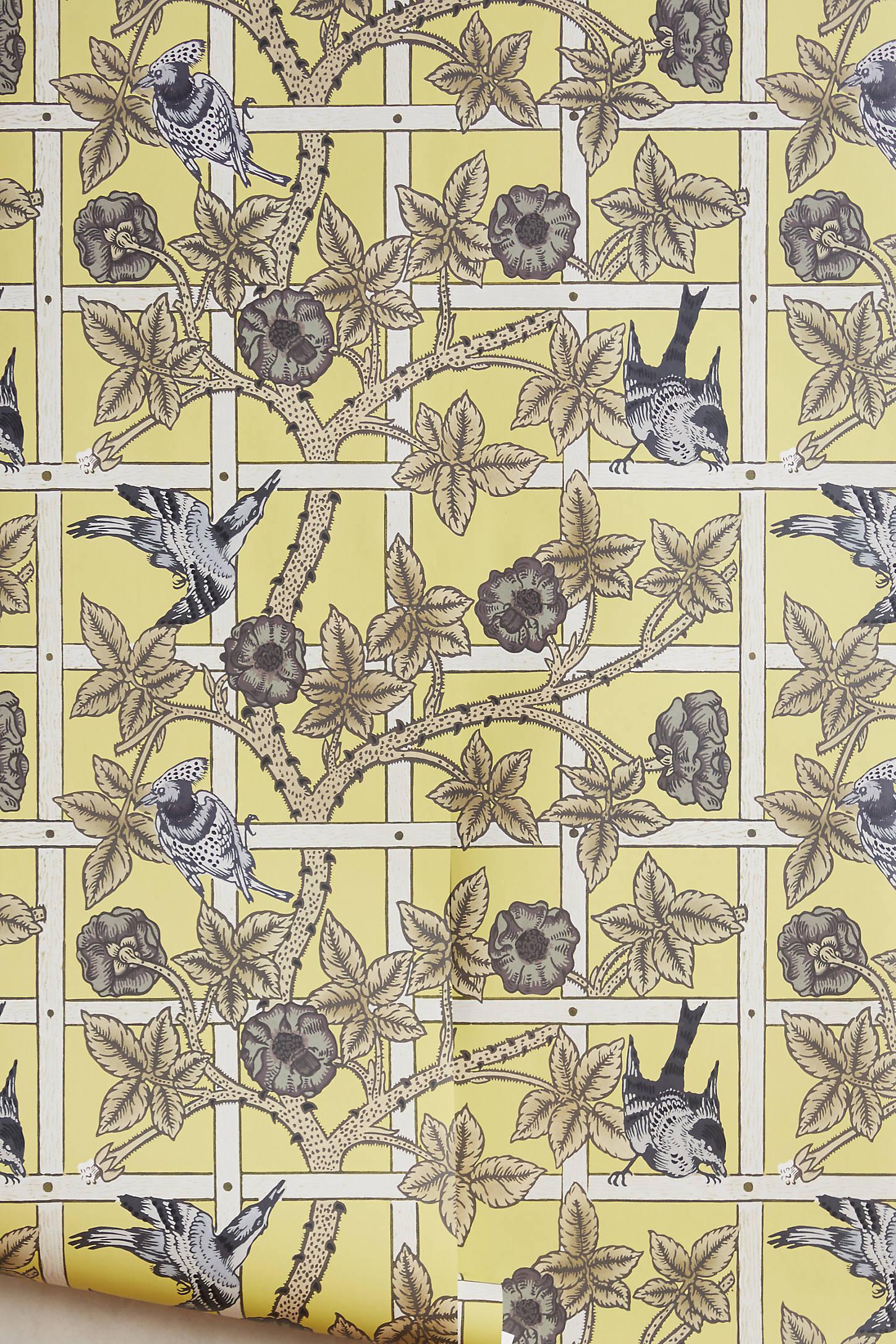 Chartreuse Trellis Wallpaper