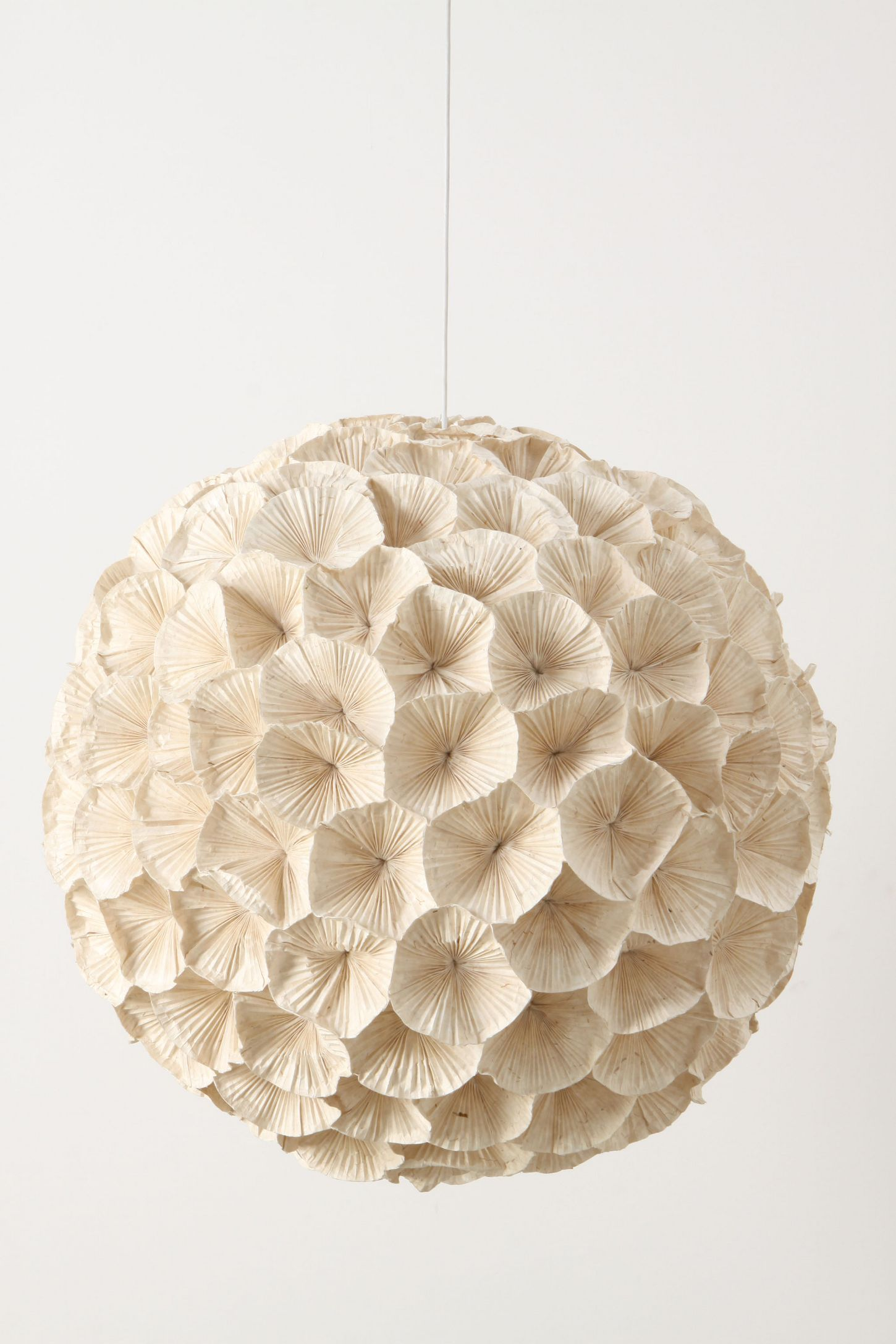 Rhododendron chandelier anthropologie aloadofball Image collections