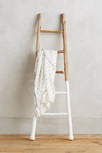 White-Dipped Ladder
