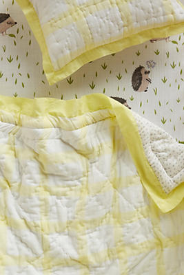 Slide View: 3: Gingham Toddler Quilt & Playmat